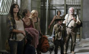 TWD...Zombie Apocalypse: When Healthcare Reform is of the utmost importance...keep your medical provider alive!  A shot fo the cast from Season 3 when they first arrived in the prison, the safest place they could find.