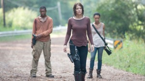 Bob, Maggie, and Sasha after the battle at the prison.  Everyone's separated and searching for each other.